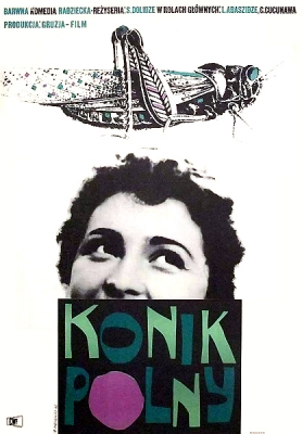 Cieslewicz_Konik